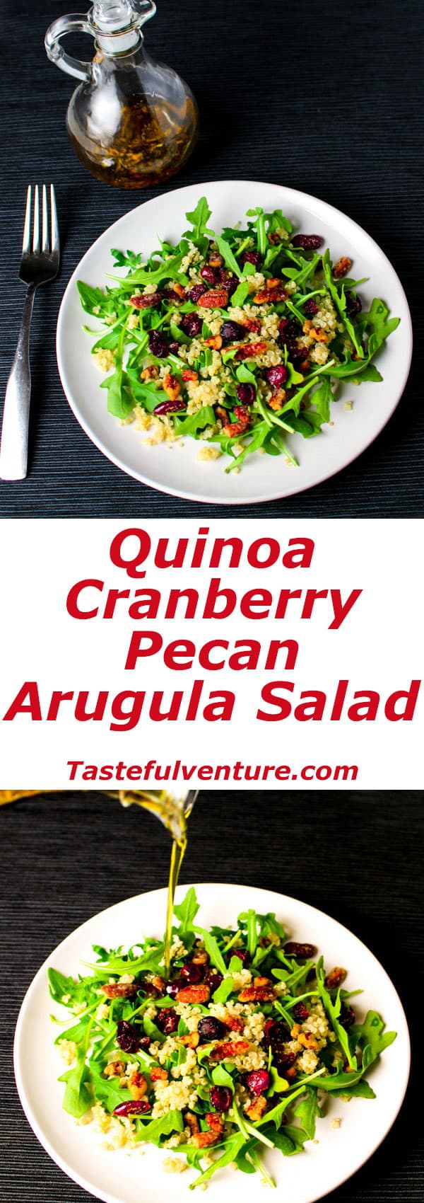 Quinoa Cranberry Pecan Arugula Salad with a super easy Balsamic Vinegar Dressing! | Tastefulventure.com