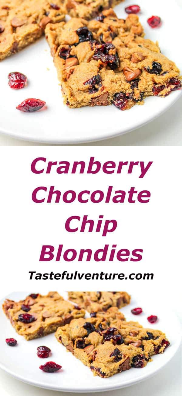 Cranberry Chocolate Chip Blondies just in time for fall + they are Gluten Free! | Tastefulventure.com