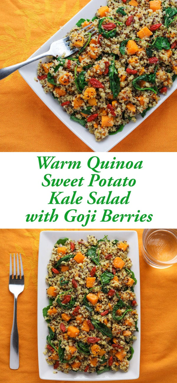 This Warm Quinoa Sweet Potato Kale Salad with Goji Berries comes together in less than 30 minutes. This is a hearty healthy meal, perfect for fall when the temperatures drop! | Tastefulventure.com