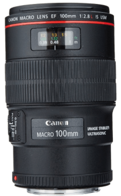 Canon 100mm Lens