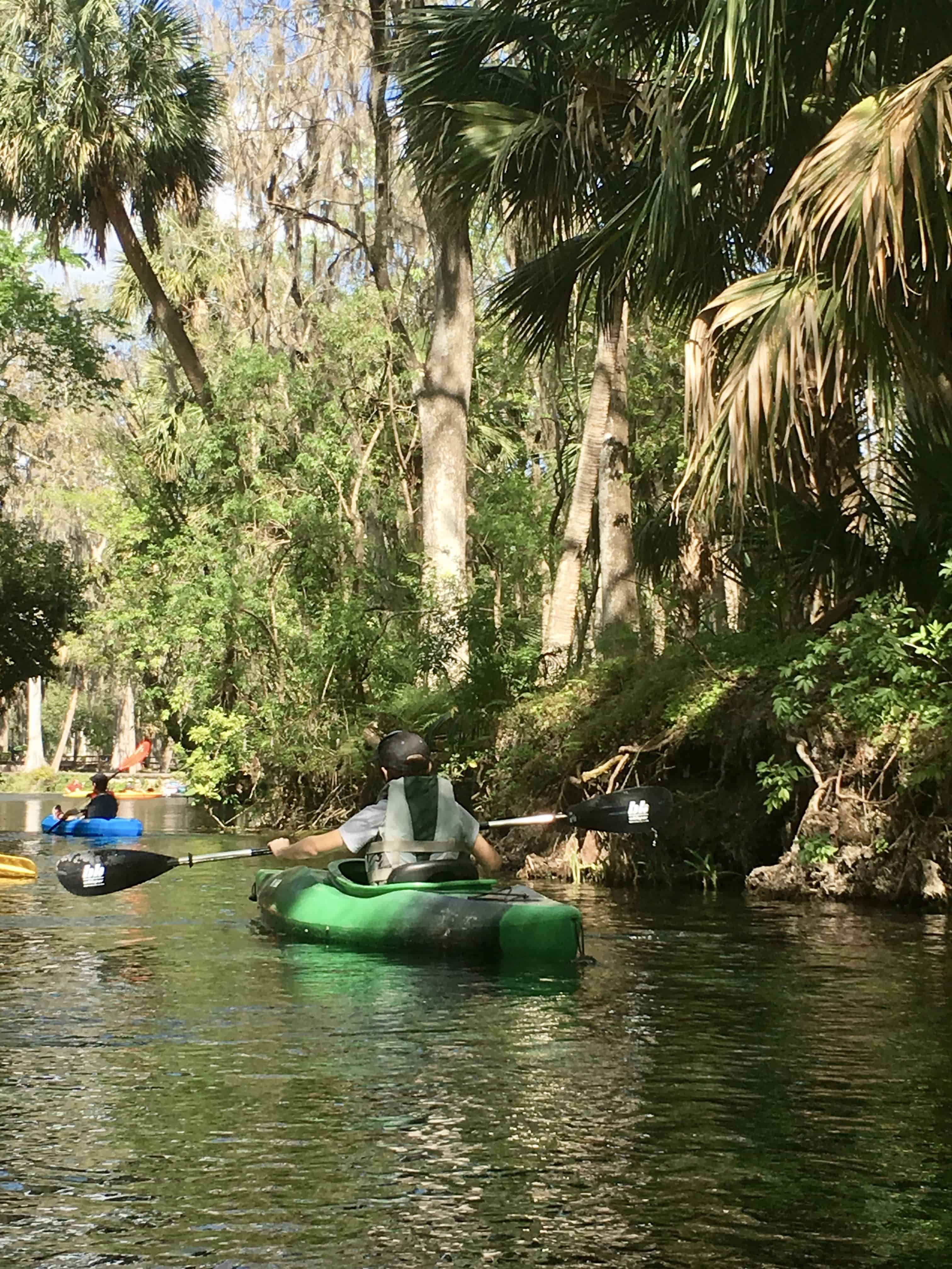 Kayaking Adventures In Silver Springs, Florida.