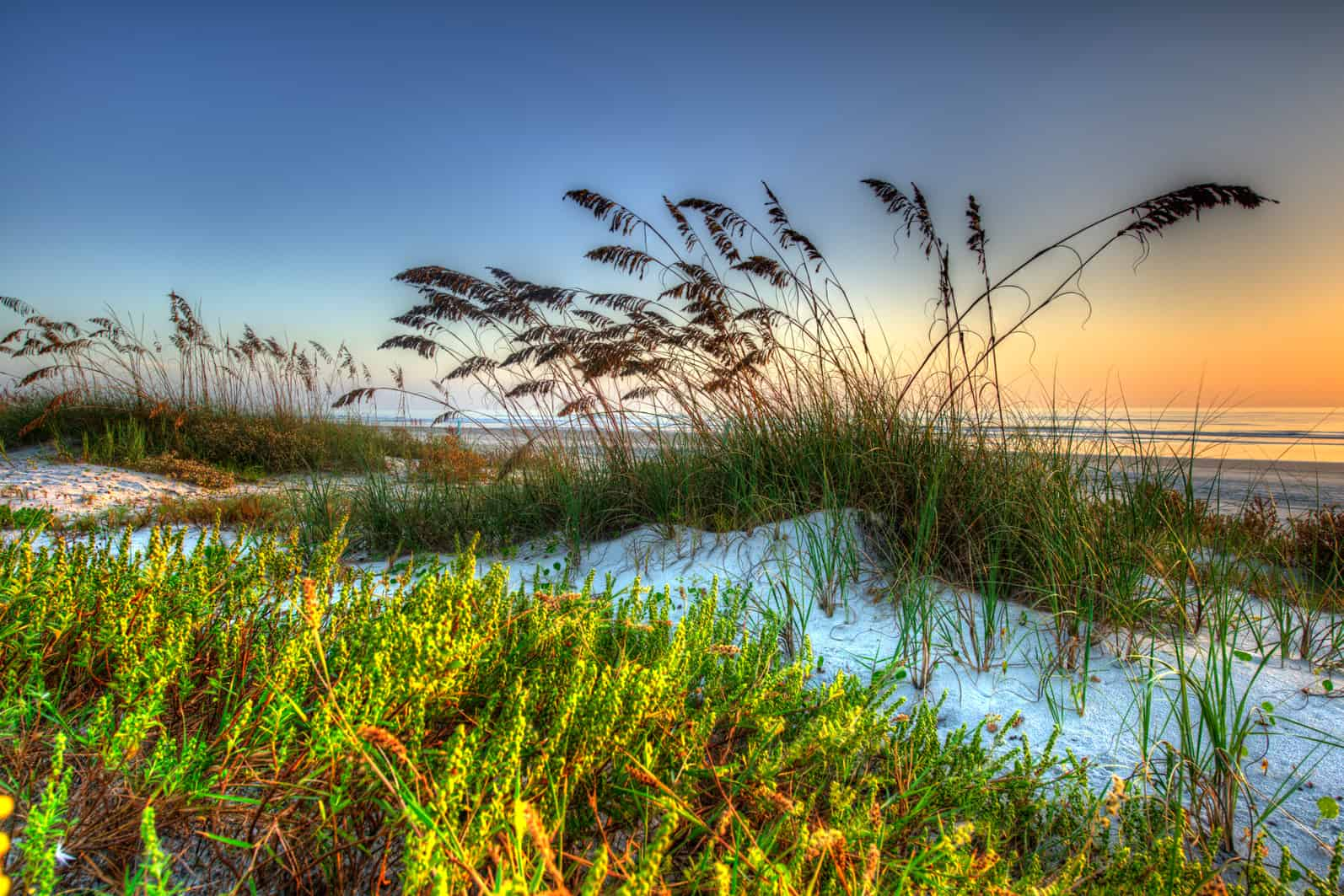 10 Reasons To Make Daytona Beach Your Weekday Getaway