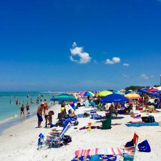7 Reasons To Visit Sarasota