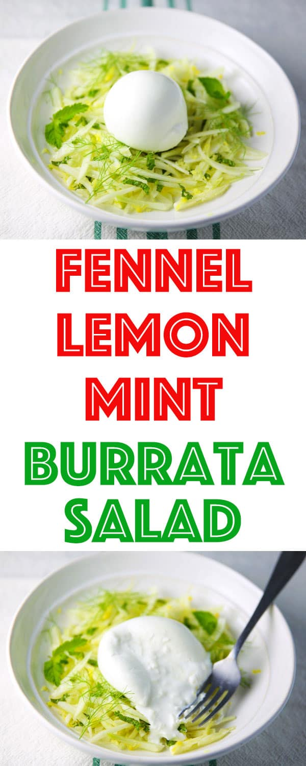 This Fennel Lemon Mint Burrata Salad is made with simple fresh ingredients and is INSANELY flavorful!