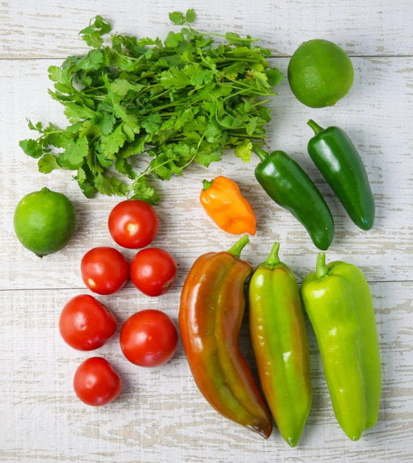 Ingredients for fresh spicy salsa