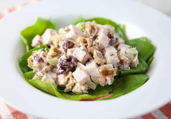 Cranberry Walnut Turkey Salad close up picture